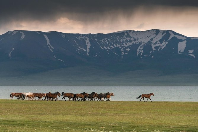 Highlights of Kyrgyzstan 10 day photo 6