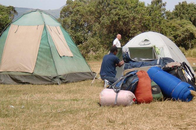 Camping Safari in Serengeti Ngorongoro and Manyara 6 days