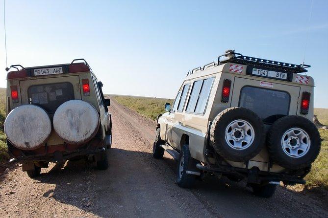 Tanzania Wildlife Safari (Serengeti Ngorongoro and Lake Manyara) - 5 days