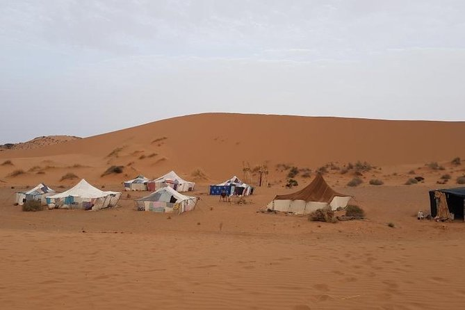 Night in The Desert Experience From Agadir - 2 Days 1 night