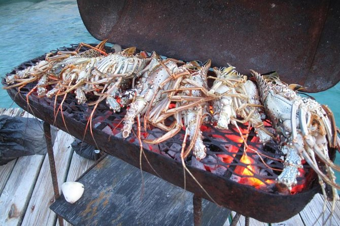 Cook Your Catch-Private Island Picnic