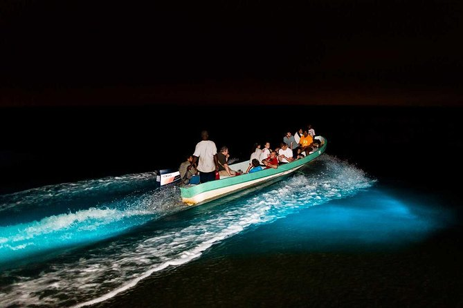 Bioluminescence Tour & Sunset River Cruise