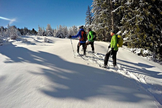 Snowshoes in the Pyrenees from Barcelona