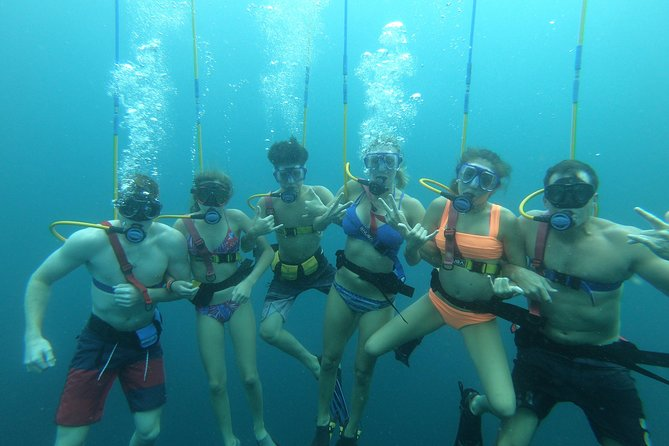 Catalina Islands 2-Dive SNUBA Tour