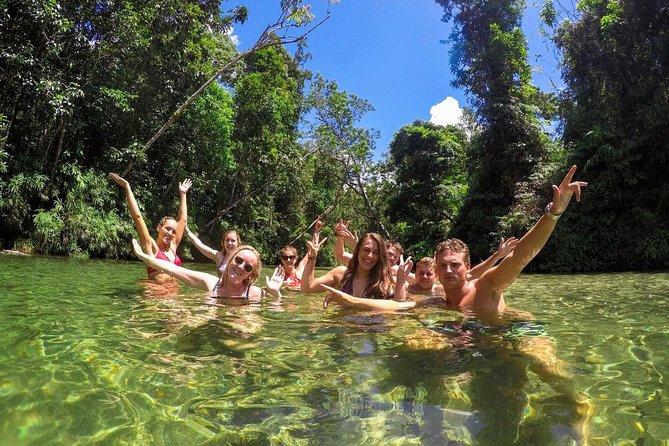 Stray Australia: Sydney to Cairns - Freestyle Tour