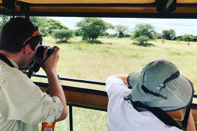 4 Days Serengeti Camping Safari