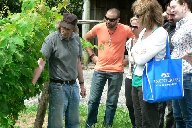 A talk at the vines