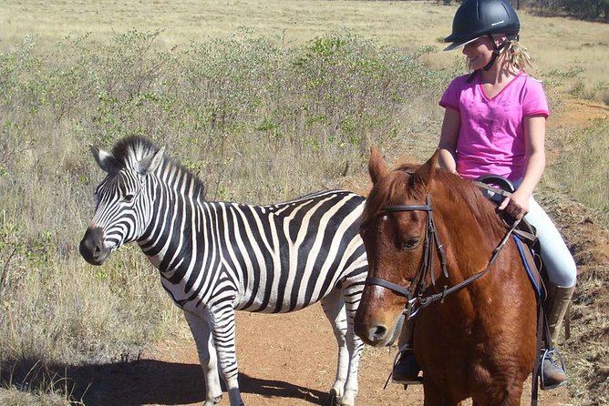 Horseback Safari Tour