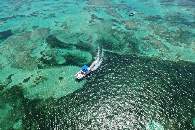 Small-Group Catamaran Snorkel with Seafood Lunch Adults only
