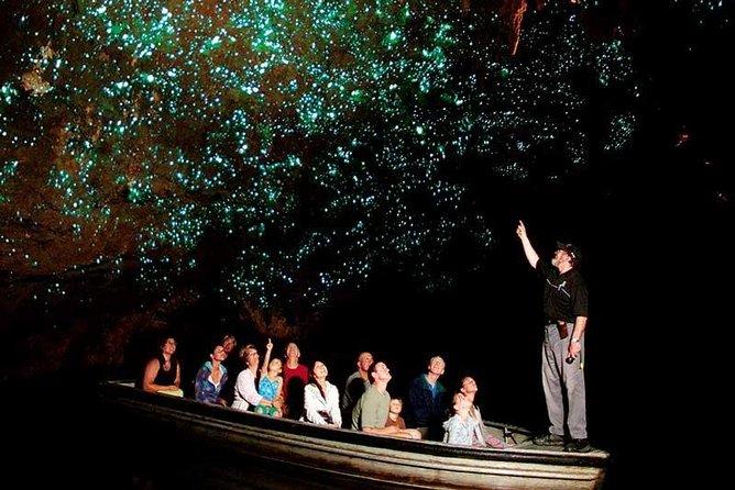 Hobbiton Movie set farm tour & Waitomo Cave full day Tour from Auckland