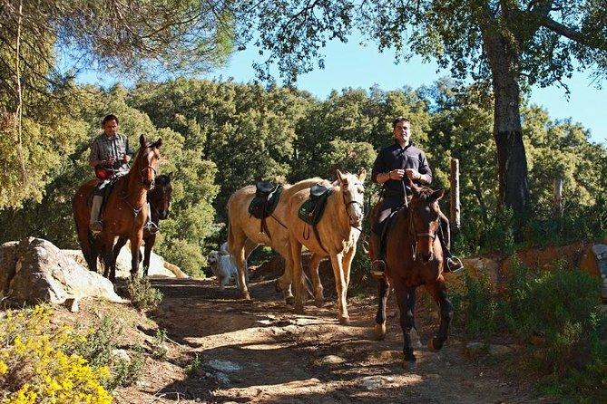 Paardrijdtocht door het natuurpark Grazalema in Cadiz