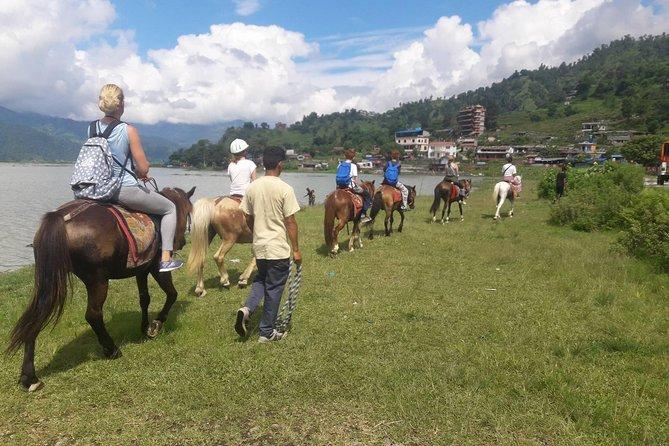 Horse Riding From Pokhara Lakeside to Sarangkot   Pony trek in Pokhara, Nepal