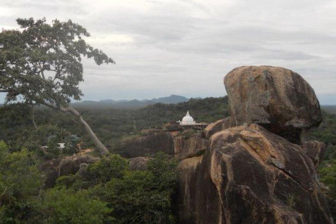 Sithulpawwa Rock Temple Tour Through Yala National Park