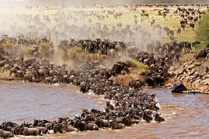 3-Days Maasai Mara Adventure Safari from Nairobi