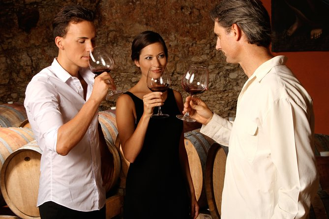 Malbec Wine Tasting Experience Tour in Buenos Aires