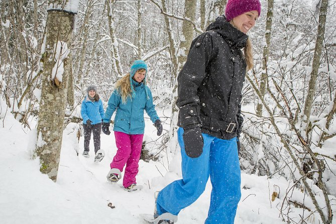 Snowshoeing Tour in Jacques-Cartier National Park