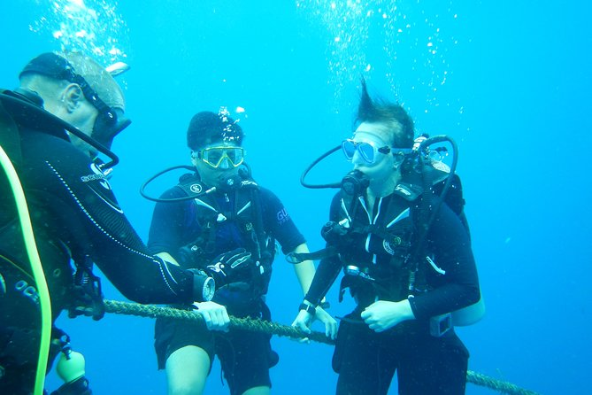 Scuba Dive Course with Free Accommodation