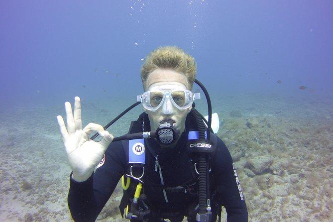 Try Scuba Diving in Gran Canaria