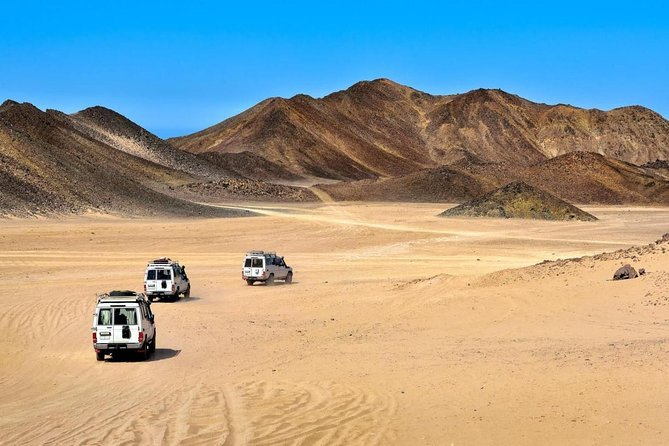Super Desert Safari (4WD, Quad Bike, Camel Ride, BBQ Dinner & Drinks)