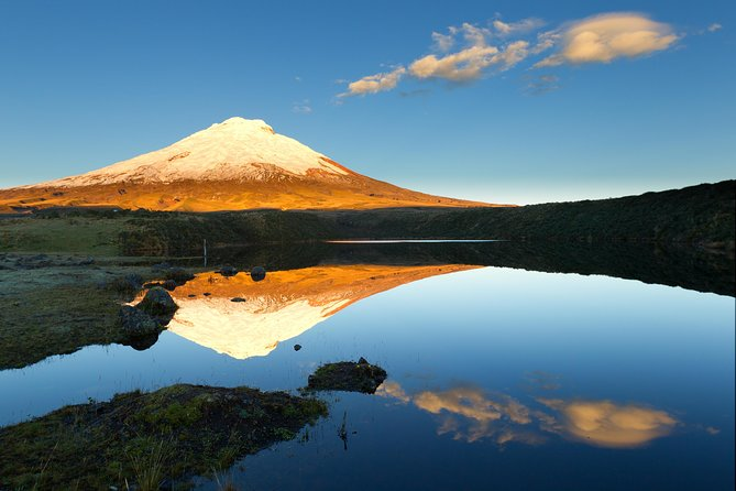 Shared Cotopaxi National Park Tour from Quito