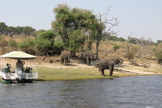 Full Day Chobe Safari start VictoriaFalls +lunch at floating restaurant or lodge
