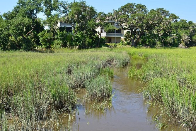 Salt Marsh Discovery at Coastal Discovery Museum