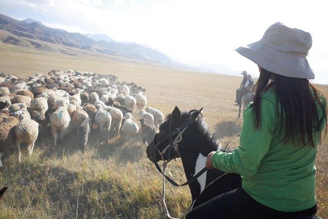 8 Tage unvergessliche Natur- und Kulturreise in Kirgisistan