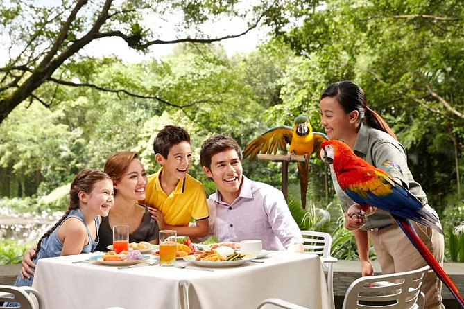 Jurong Bird Park Ticket and Lunch with Parrots with Private Transfers