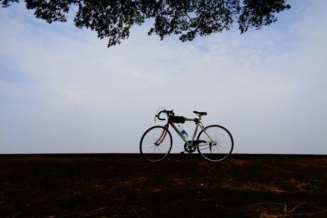 Cycling in Goa - Explore Divar and Chorao Islands photo 6