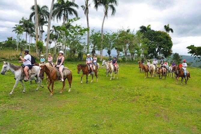 Adventure Safari Punta Cana