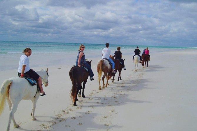 Horseback Riding Excursions Punta Cana