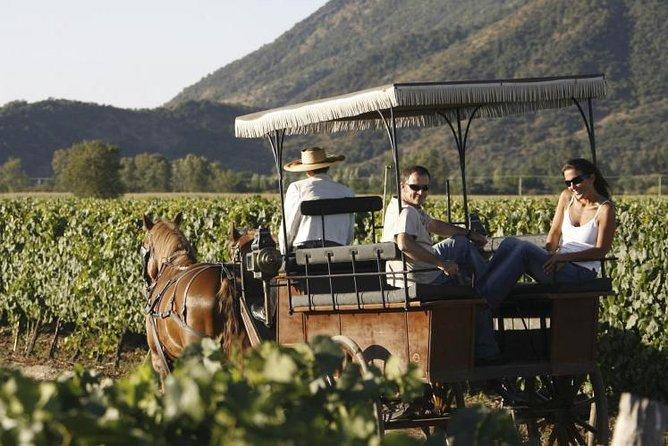 Wine & Horse Carriage Tour: Loma Larga and Emiliana Vineyards