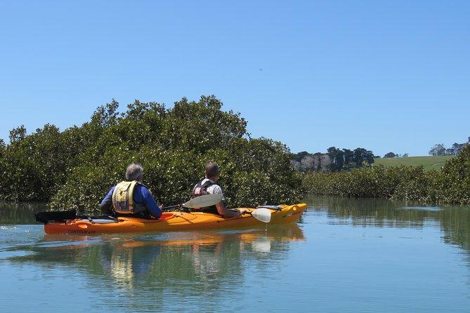 Marine Reserve Kayak Tour