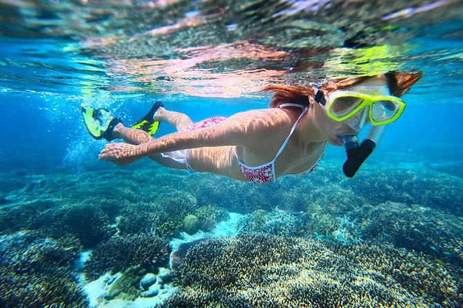 Abrolhos Islands Scenic Flight & Snorkel Adventure from Perth