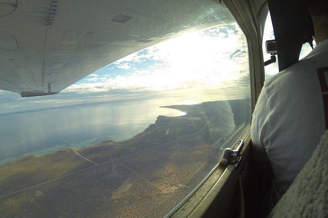 Flight up the coast