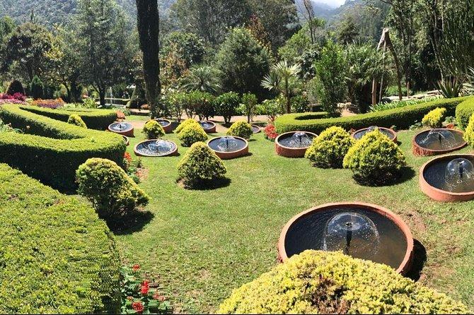 Jardim dos Pinhais Ecco Parque Admission Ticket