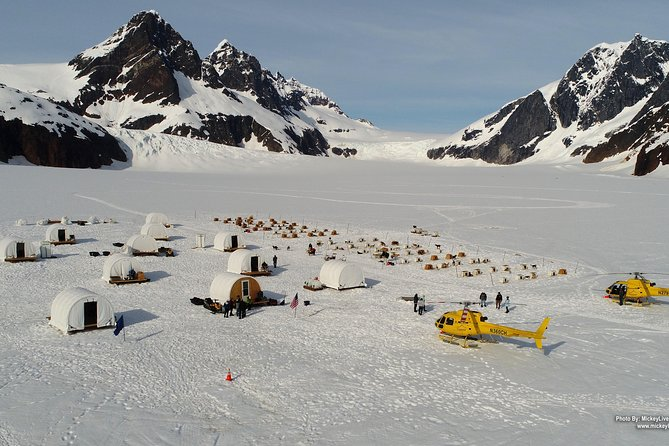 Juneau Shore Excursions: Juneau Helicopter Tour & Dogsledding Experience