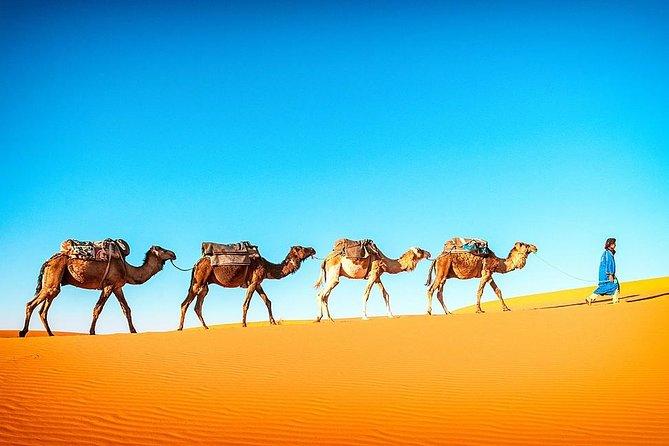 6 dage Privat tur og kultur fra Casablanca