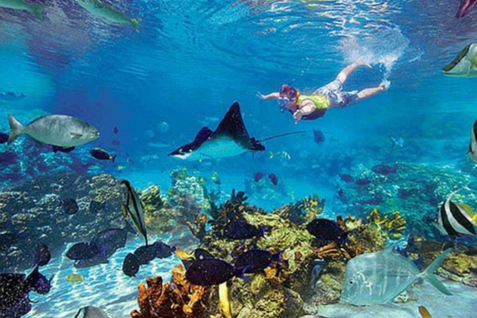 Boat tour to the exotic caves with snorkel from Playas del Coco