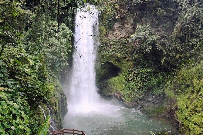Full day La Paz Waterfall visiting Starbucks farm and Poas Volcano from San Jose