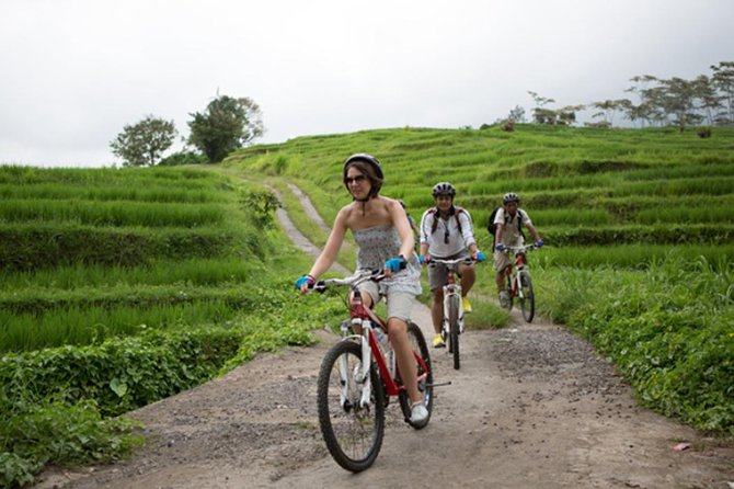 Private Full Day Trip-Kintamani Volcano Downhill Cycling-Goa Gajah Temple-Lunch