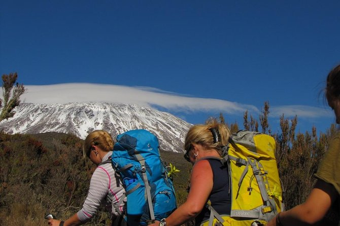 Kilimanjaro Trek via Lemosho Route photo 2