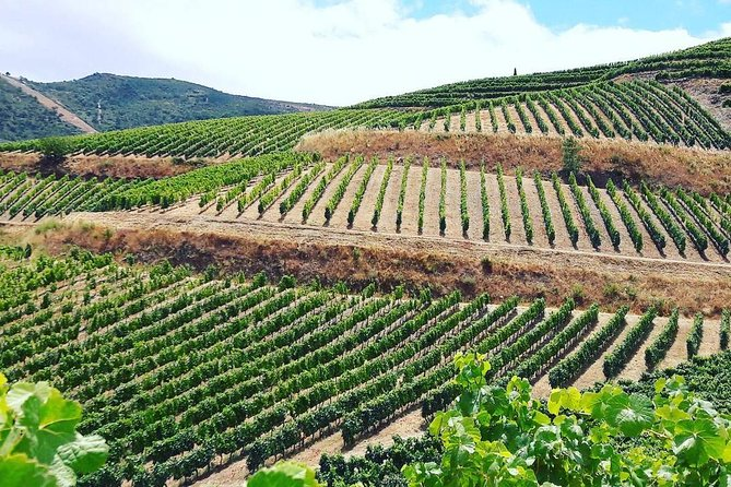 Full Day Gold Valley, With lunch and wine tasting Small-Goup Tour from Porto