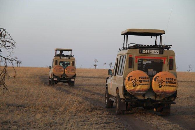 4 Days Game drives Safari Tarangire, Serengeti and Ngorongoro Crater