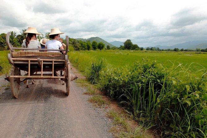 Explore! A Day as a Rice Farmer