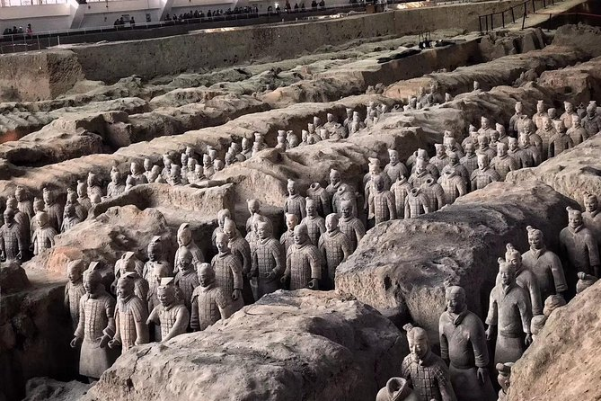 Mini Group: Daily VIP Xian Terracotta Warriors and City Discovery Tour