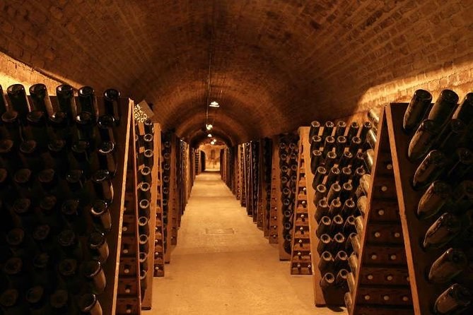 Champagne & Reims Tasting Day Trip from Paris