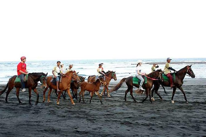 Bali Beach Horse Riding and Hidden Canyon Tour photo 2