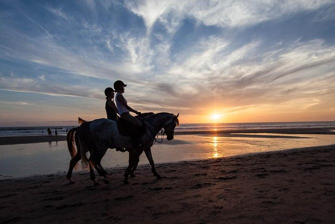 Private Tour Unforgettable Moment Horse Riding 90 minute Around Black Sand Beach