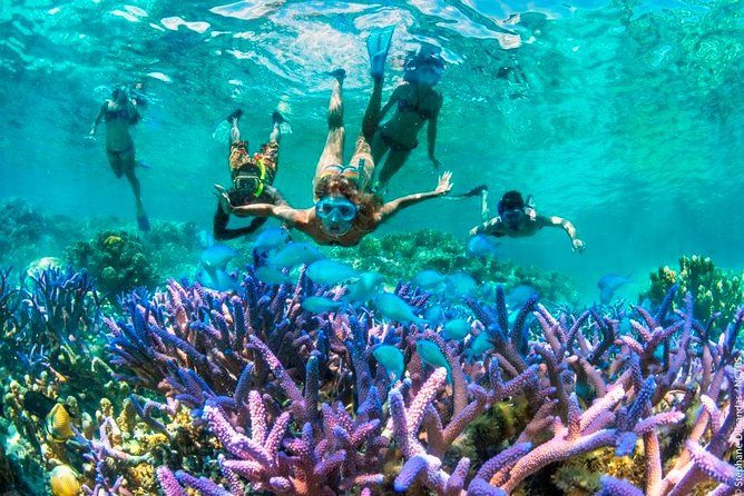 Bloo Lagoon Snorkeling East Bali With Transport and Lunch